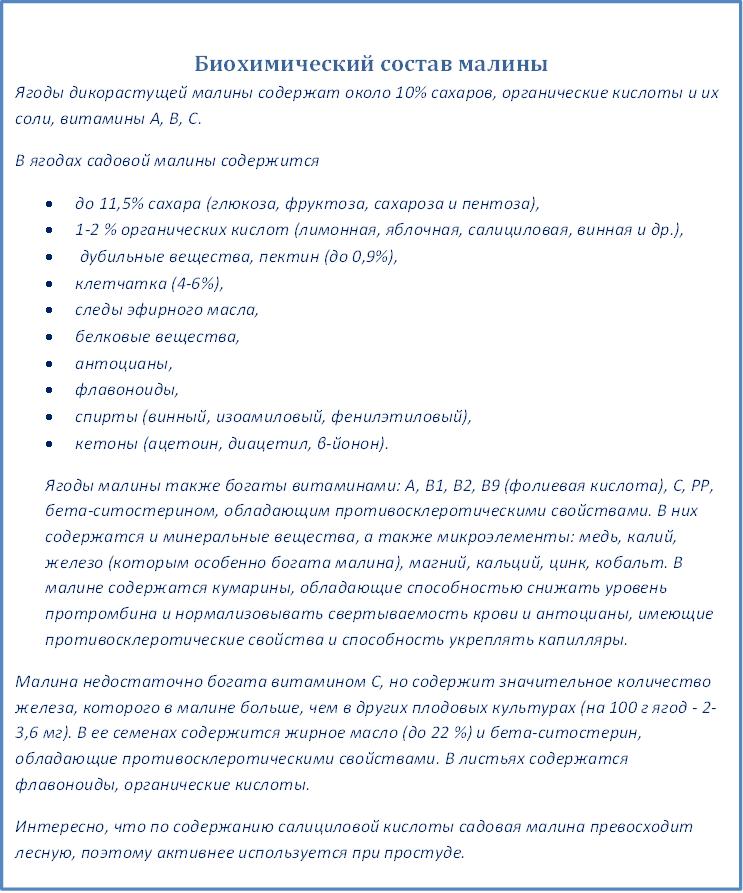 биохимический состав малины