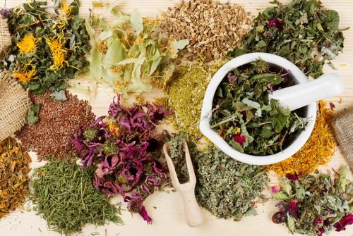 травы и специи