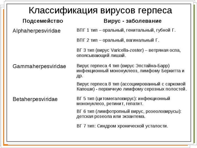 классификация герпаса