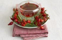 Рецепты отвара из шиповника при простуде для взрослых и детей