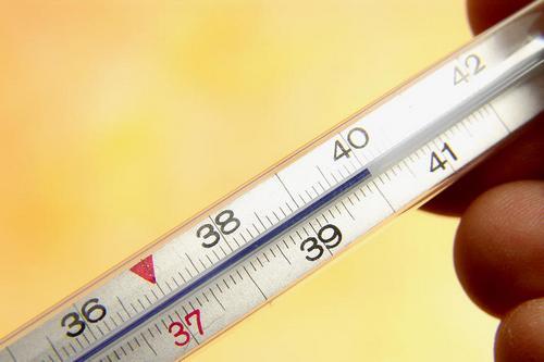 40 градусов на градуснике