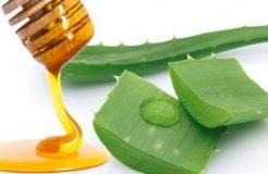 Рецепты алоэ с медом для лечения кашля