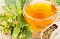 Польза липы в лечении простуды и кашля — рецепты